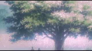Catapila - Void i Need You