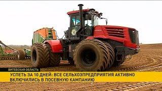 Сельхозпредприятия Витебской области активно включились в посевную кампанию