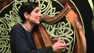 Witcher 3 Priscilla Song Harp Cover Polish version