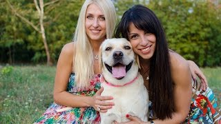 Stylish Girls And Fancy Labrador In Decorated Collars - Photo Session By Fordogtrainers.com