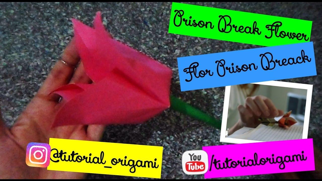 Tutorial Origami Prison Break Flower Youtube