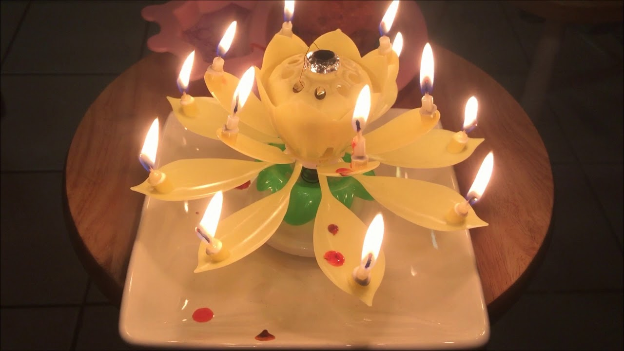 Musical Flower Birthday Candle Lotus Flower Musical Amazing Candle