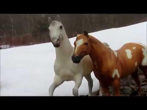 -Rayven- Breyer Horse Movie [