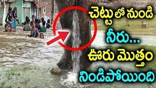 చెట్టు లో నుండి నీరు...ఊరు మొత్తం నిండిపోయింది Miracle Water Fountain Coming Out From Tree | Sumantv