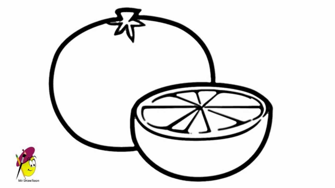 Orange - How to draw Oranges - How to draw Fruits - YouTube