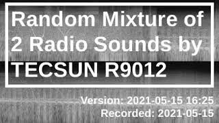Random Mixture of 2 Raḋio Sounds by TECSUN R9012 [2021-05-15 16:25]