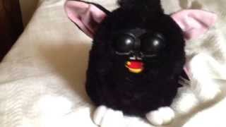 Possessed furby
