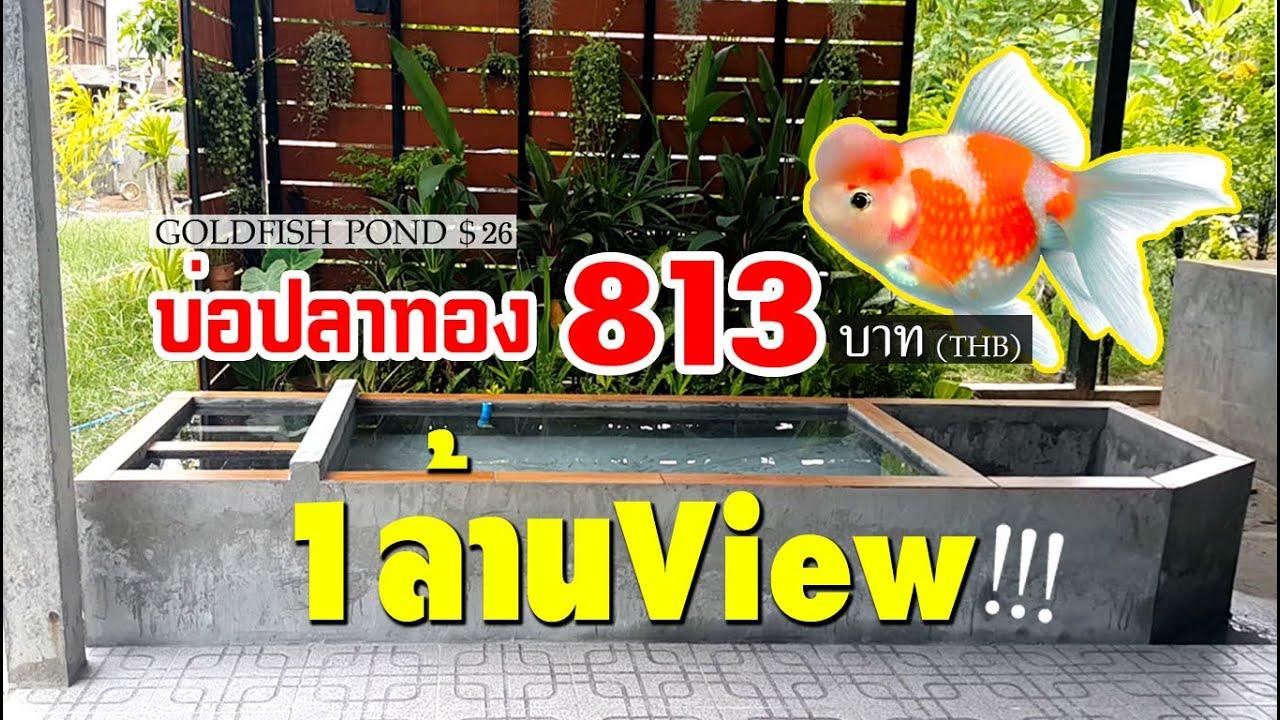 บ่อปลาทองทำเอง งบ 813 บาท goldfish pond diy l คุณพ่อคราฟ EP.23