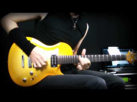 Guns'N'Roses - Knockin' on Heaven's door guitar interpretation - Neogeofanatic