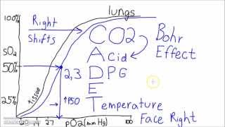 Physiology - The Oxygen–Hemoglobin Dissociation Curve