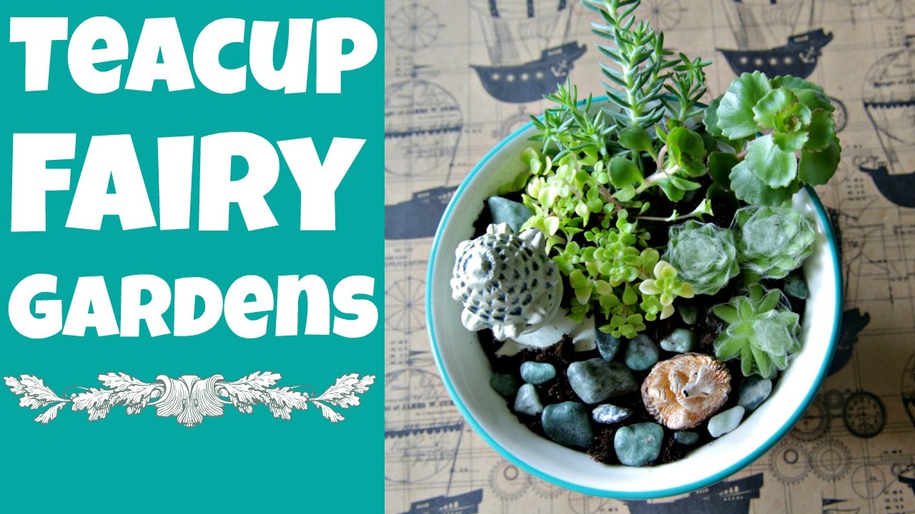 Dollar Store Crafts: DIY Teacup Fairy Gardens   YouTube