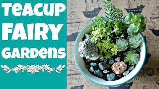 Dollar Store Crafts: Diy Teacup Fairy Gardens