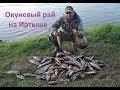 Рыбалка на Иртыше в начале сентября 2017, день 2