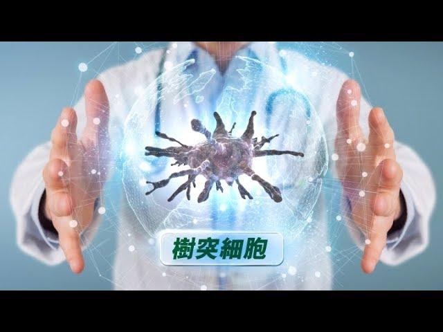 對抗癌細胞 !自身免疫細胞軍隊!