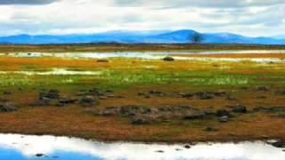 The Inishbofin - Robert Leon