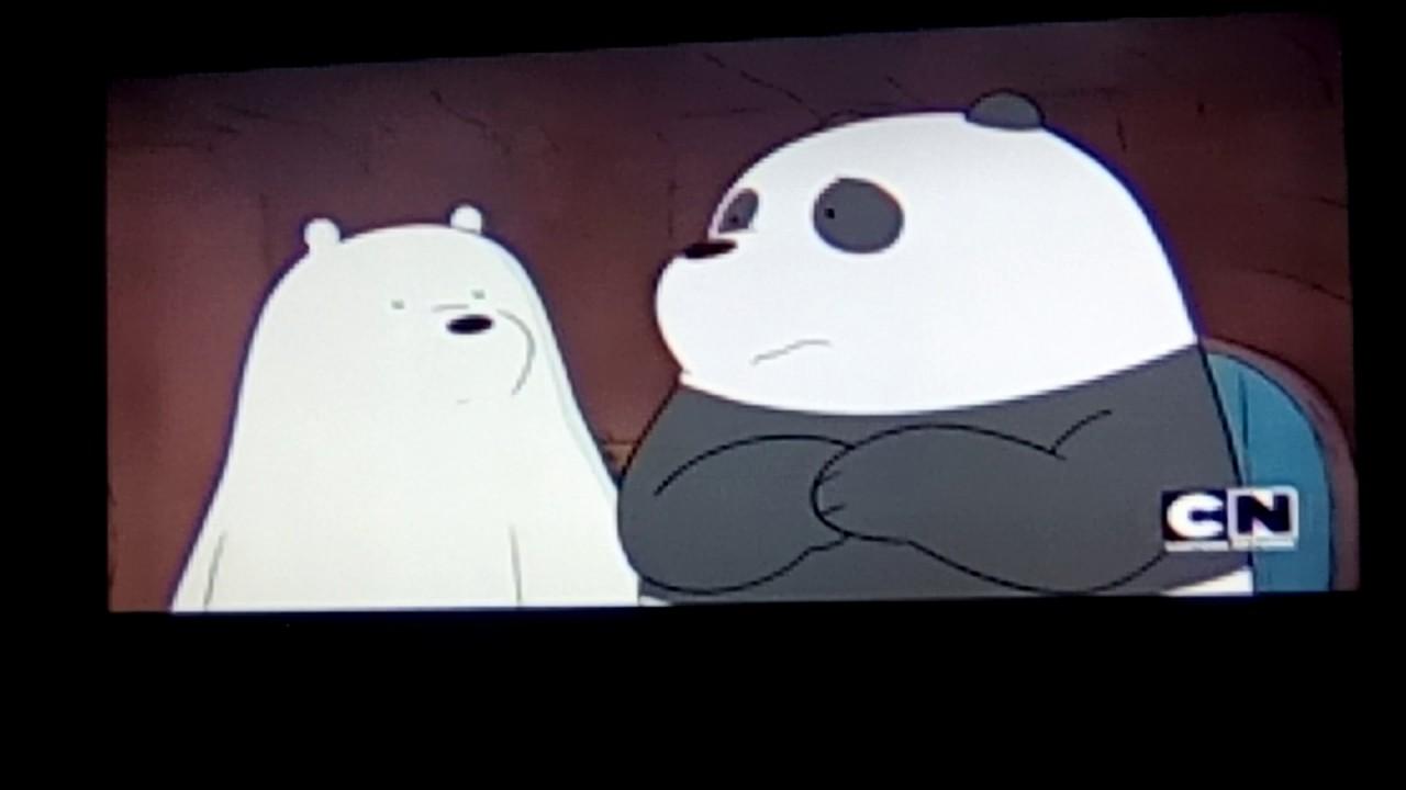 Bear cartoon sex
