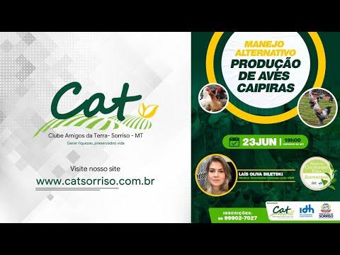 Projeto Cultivando Vida Sustentável - Manejo Alternativo #PRODUÇÃO DE AVES CAIPIRAS.