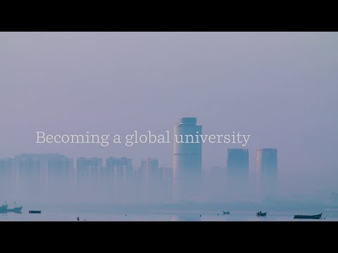 Becoming a global university