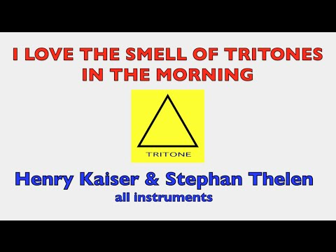Henry Kaiser/Stephan Thelen - I Love The Smell Of Tritones In The Morning