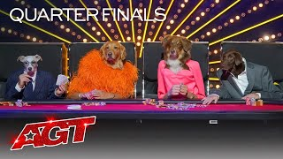 Canine Stars Bring Their Best Dog Performance to AGT!  America's Got Talent 2021