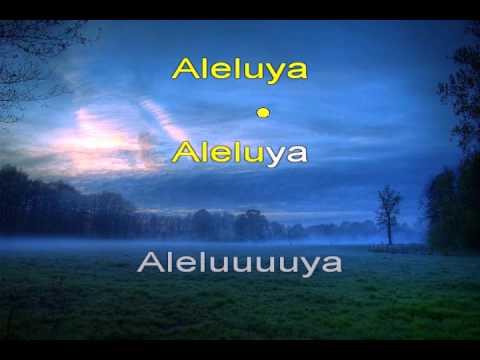 Aleluya - hallelujah - Pista Cristiana Español - KARAOKE