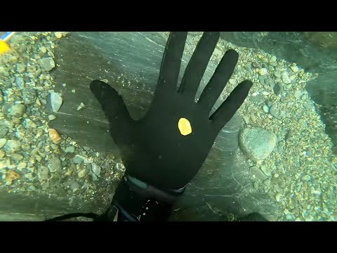 Checkout The Gold These Divers Uncovered!!