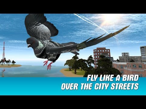 City Bird Pigeon Simulator 3D | Letsplay Video