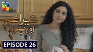 Tera Ghum Aur Hum Episode 26 HUM TV Drama 24 September 2020