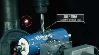 Yinlong LTO Lithium Titanate battery official safety tests