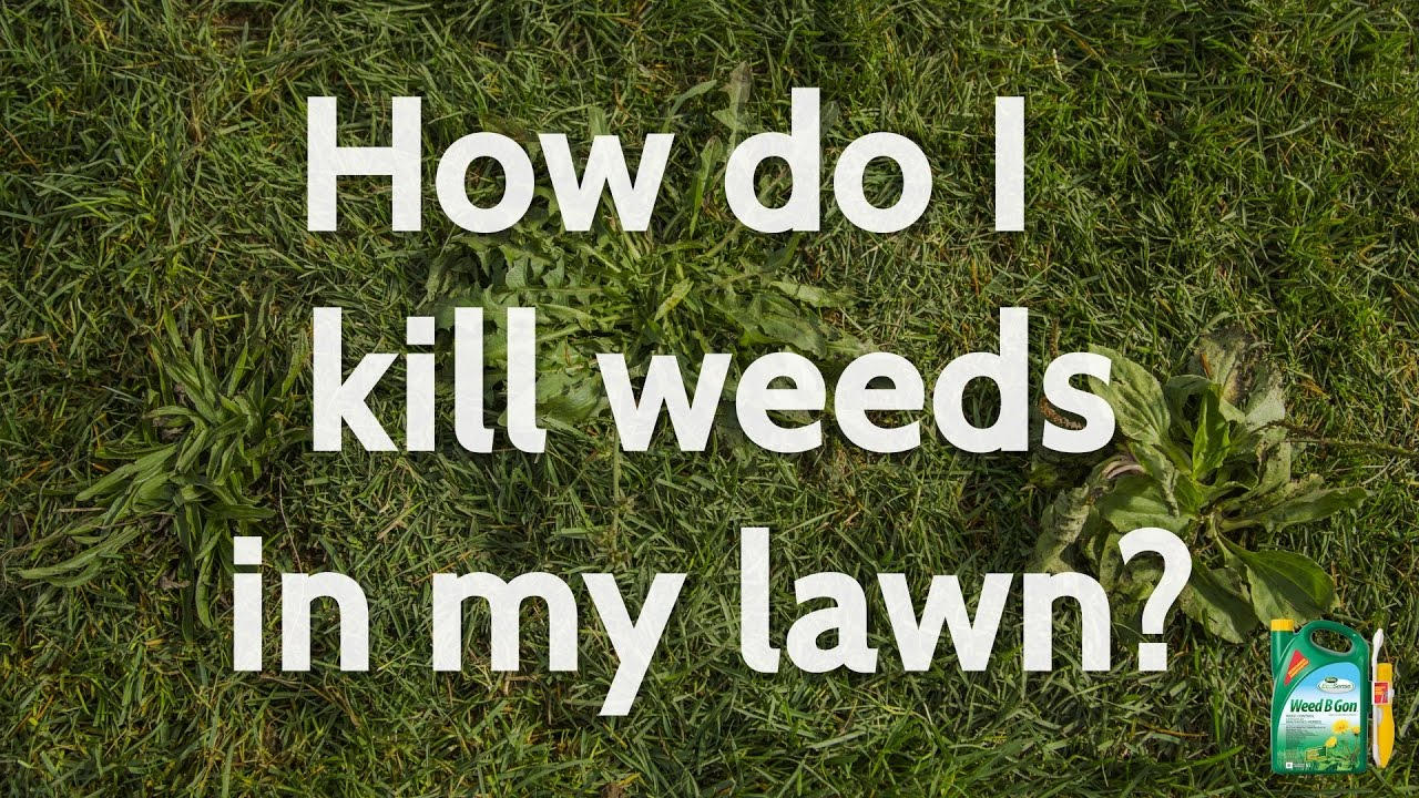 How To Get Rid Of Weeds In Gr