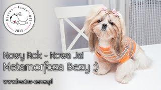 Nowy Rok - Nowa Ja! Metamorfoza Bezy :)