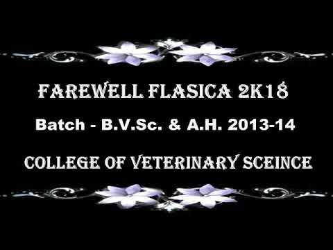 FAREWELL FELICIA 2K18  BATCH BVSc & A H 2013-14 COLLEGE OF VETERINARY SCIENCE AND AH ANJORA DURG CG