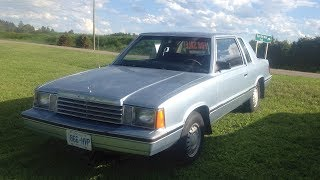 My First Time Driving the 1983 Dodge Aries!