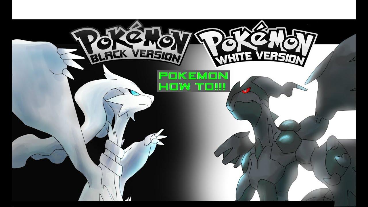 Watch How to Make a Balanced Pokémon Black and White Team video