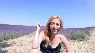 Lavanda, campos de lavanda con una Mexicana en Francia   vlog turismo blogger travel vlog