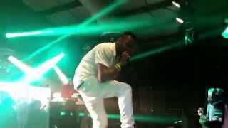 Baby Cham performing at Flag Fete 2015 in Orlando