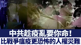 中共趁疫害人權 美官員憂雙肺移植源自法輪功|新唐人亞太電視|20200406
