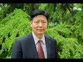 Jinsheng Yang y los principios de la medicina tradicional china