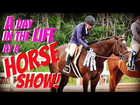 A DAY IN THE LIFE AT A HORSE SHOW! Day 195 (07/14/18)