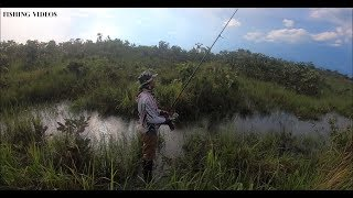 Fly Fishing Cambodia Trip Traditional Today, Best Fishing Videos