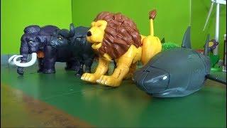 헬로카봇 4마리 동물 로봇 변신 장난감 놀이 Hello Carbot 4 Animals Robot Transformation Toys Play