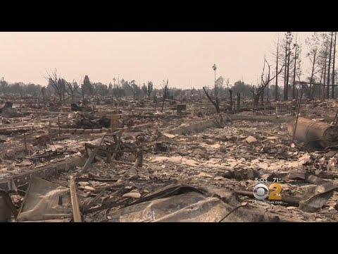 Deadly Wildfires Decimate California Wine Country