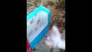 Самодельная залипательная игрушка для кошки