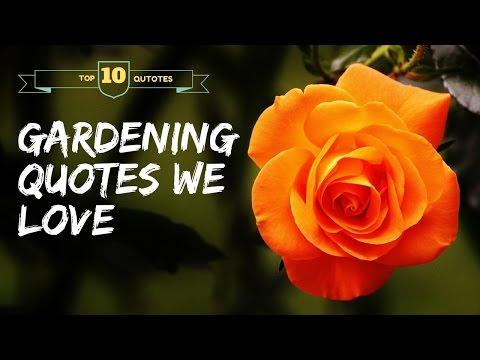 Ten Amazing Garden Quotes and Sayings