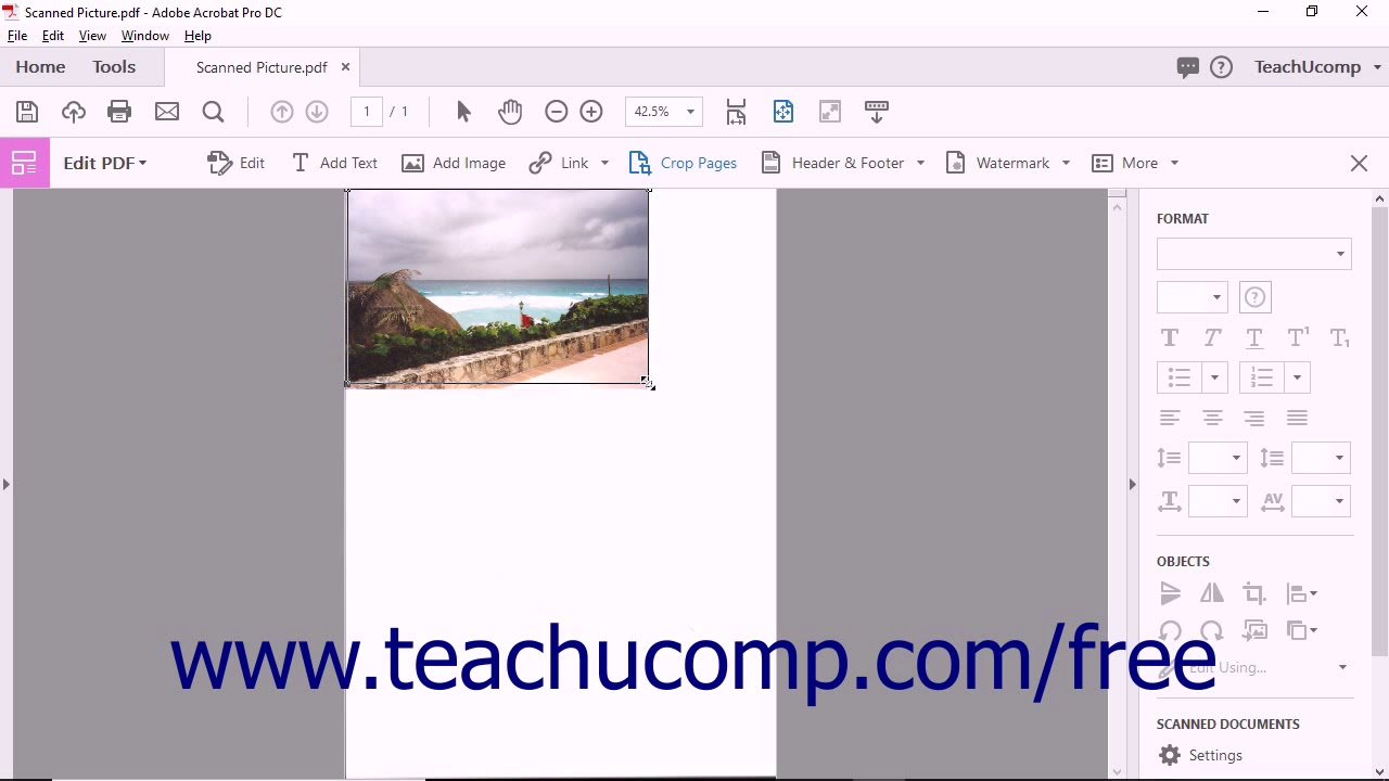 Crop Pages in Adobe Acrobat- Instructions and Video Lesson