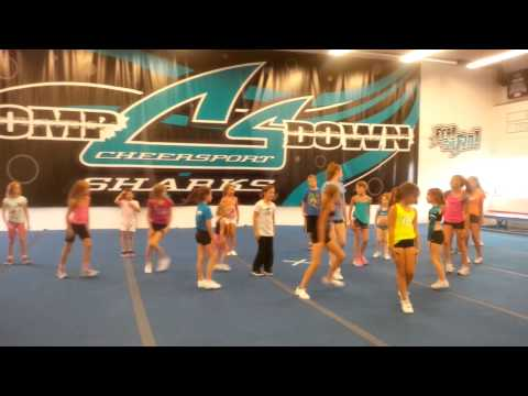 Summer camp fun at Cheer Sport Sharks Ottawa