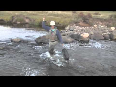 Fly Fishing In New Mexico - Mouse Pattern
