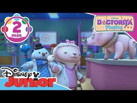 Doctorița Plușica - Cântecelul de la Urgență. Doar la Disney Junior!
