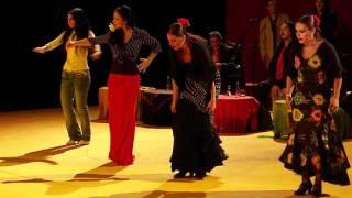 Fiesta Gitana - bailaoras / bailaores
