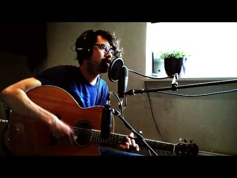 Pink Rabbits - The National (Trouble Will Find Me) acoustic cover +chords/tabs/lyrics